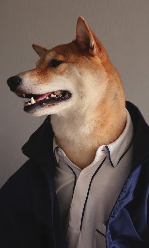 _0001_fashiondogdaystall3