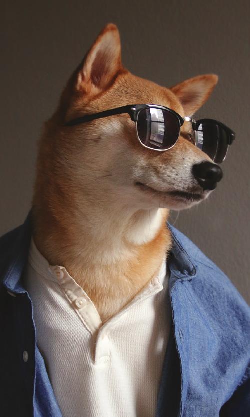 _0003_fashiondogdaystall