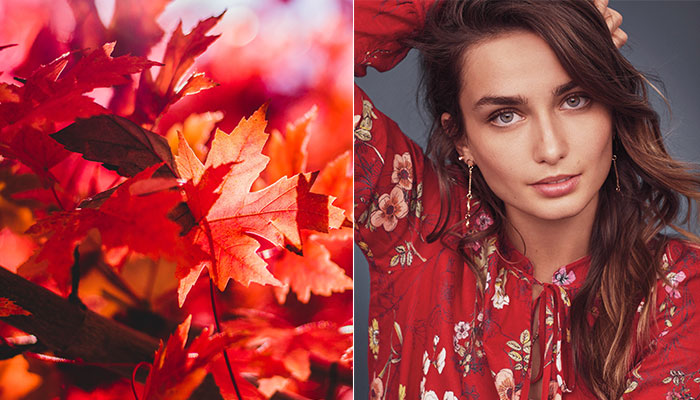 AUTUMN BEAUTY UPDATE