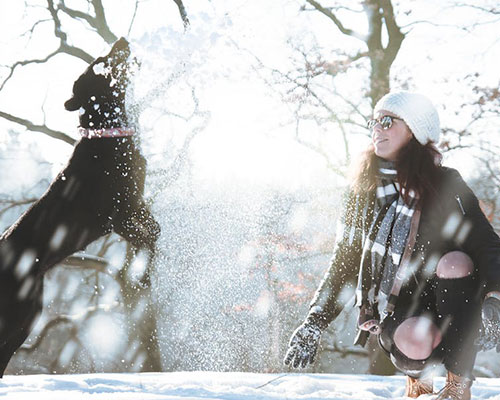 HIT THE SLOPES WITH YOUR POOCH