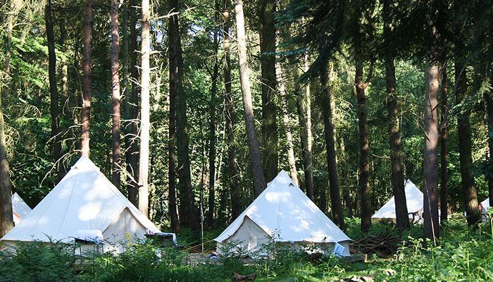 Jollydays campsite
