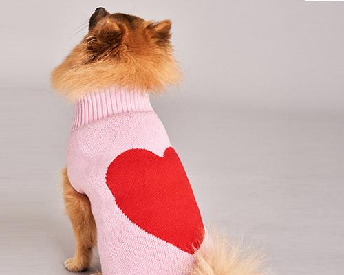 Billie dog coat