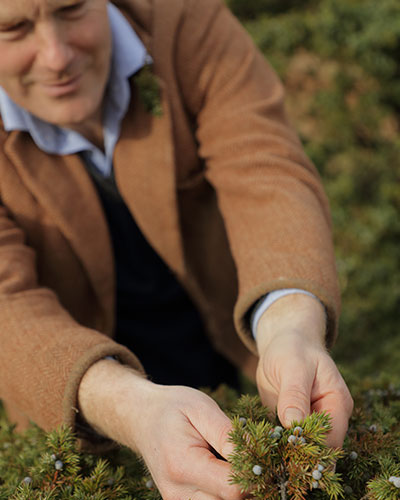 WILD SPIRITS: GETTING TO KNOW HEPPLE GIN