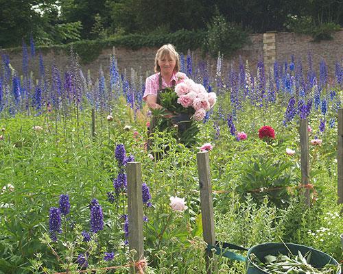 Garden Walks & Afternoon Tea with Dame Susan Cunliffe-Lister, Swinton Estate