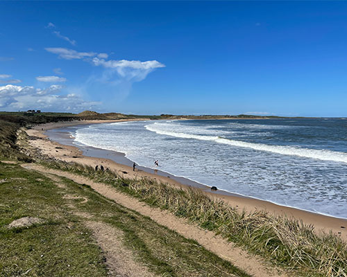 Living Local: Our Guide To Living Luxe In Low Newton